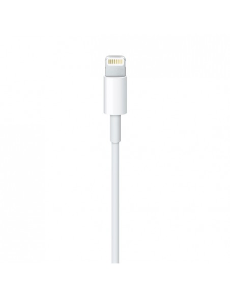 CARICABATTERIE IPHONE: vendita online Apple Lightning - USB 2 m Bianco in offerta