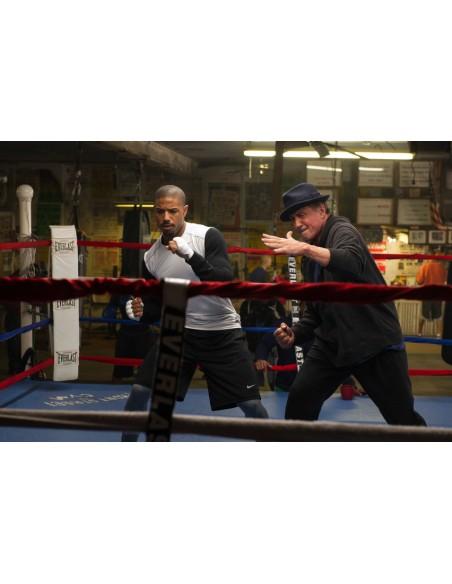 FILM: vendita online Warner Bros Creed DVD 2D Inglese, Francese, ITA in offerta